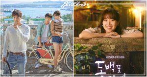 When the Camellia Blooms, คังฮานึล, ซีรี่ย์เกาหลี, กงฮโยจิน, 동백꽃 필 무렵, Kang Ha Neul, Gong Hyo Jin, Traveler, รายการ Traveler