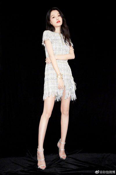 คุณแม่ดาราจีน - ซุนอี๋ - Sun Yi - 孙怡