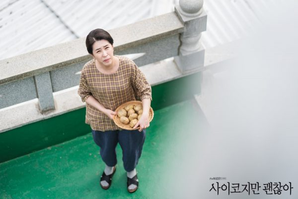 It's Okay Not To Be Okay, ซีรีส์เกาหลี, It's Okay to Not Be Okay, คิมซูฮยอน, ซอเยจี, ซีรี่ส์เกาหลี, ดาราเกาหลี, 사이코지만 괜찮아, Kim Soo Hyun, Seo Ye Ji, 서예지, 김수현, โอจองเซ, พัคคยูยอง, พัคกยูยอง, ปรากฏการณ์ของ It's Okay Not To Be Okay, ซีรี่ย์เกาหลี, นักแสดงเกาหลี, Oh Jung Se, 오정세, ดาราเกาหลี, จางกยูริ, คิมจูฮอน, คังกีดุง, ,คิมชางวาน, คิมมีคยอง, จางยองนัม, ชเวอูซอง, อีออล, คิมกีชาน, จองแจกวาง, พัคจินจู, แพแฮซอน, จีฮเยวอน