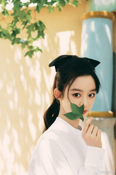 Huangyang Diantian -黄杨钿甜
