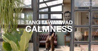 OPPO_TangBaVoice_